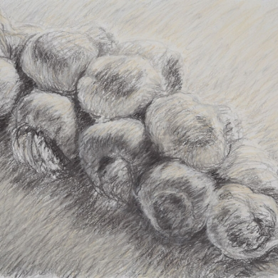 "Braided Garlic #2, 2010, mixed media on paper, 22"" x 30"""