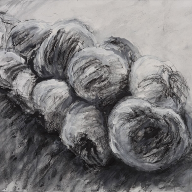"Braided Garlic Drawing #5, 2010, mixed medial on paper, 22"" x 30"""