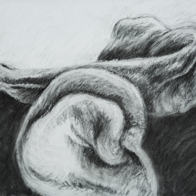 "Body Language Series - II, 2013, charcoal on paper, 22"" x 30"""