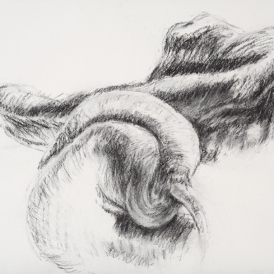 Body Language Series - I, 2011, charcoal on paper, 22 in x 30 in