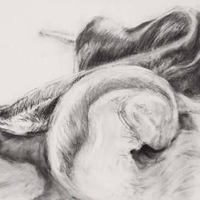 Body Language Series - III, 2011, charcoal on paper, 22 in x 30 in